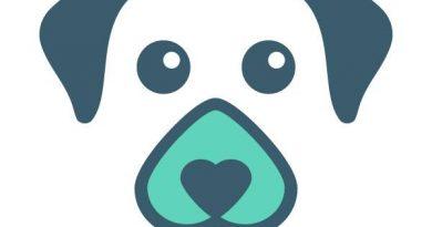 DingDog - aplikacja android